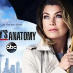 Vanaf 3 januari te zien op Net5: Het dertiende seizoen van Grey's Anatomy